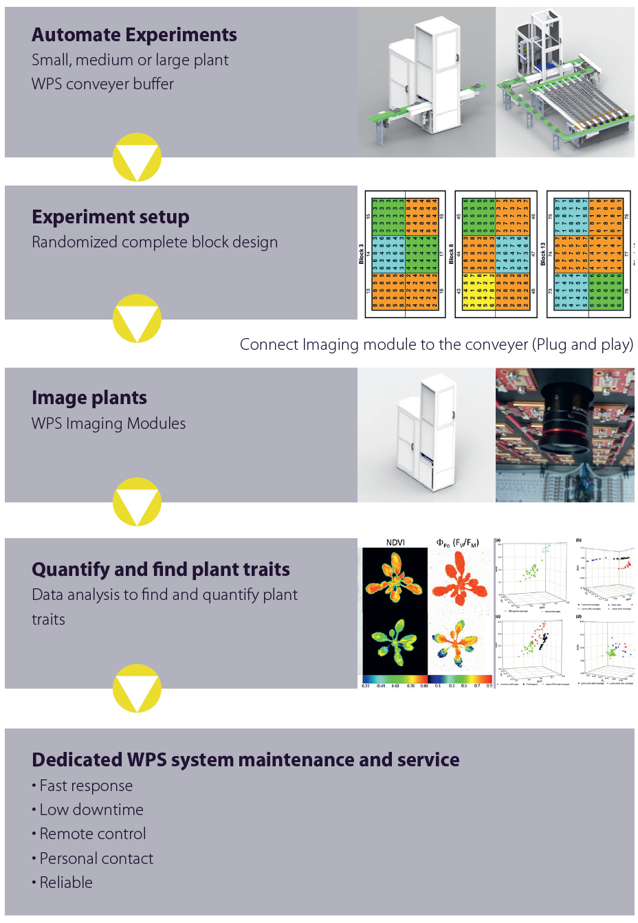 Automated Plant Phenotyping Process