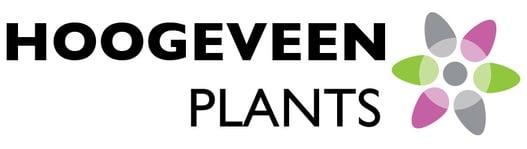 Hoogeveen Plants