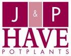 JP ten Have