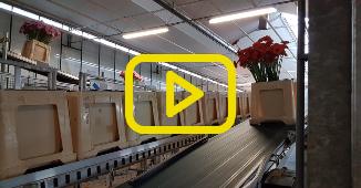 LG Flowers buffersysteem