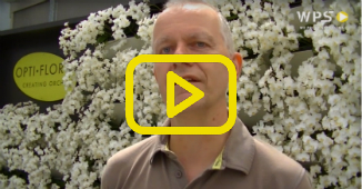 Opti-flor: Guido Zwarts