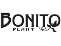 Boon (BonitoPlant)