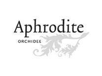 aphroditeorchidee