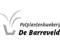 barreveld