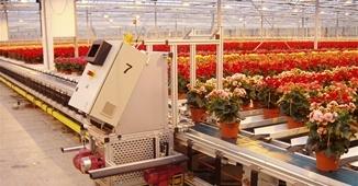 Sistema de Transporte de Plantas