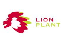Lion Plant