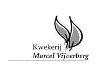 marcel vijverberg
