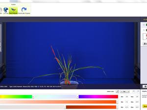 RGB Imaging Sensor