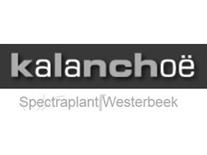 spectraplant