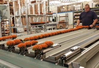 WPS Mobile Plant Order System for Kooij Nertera