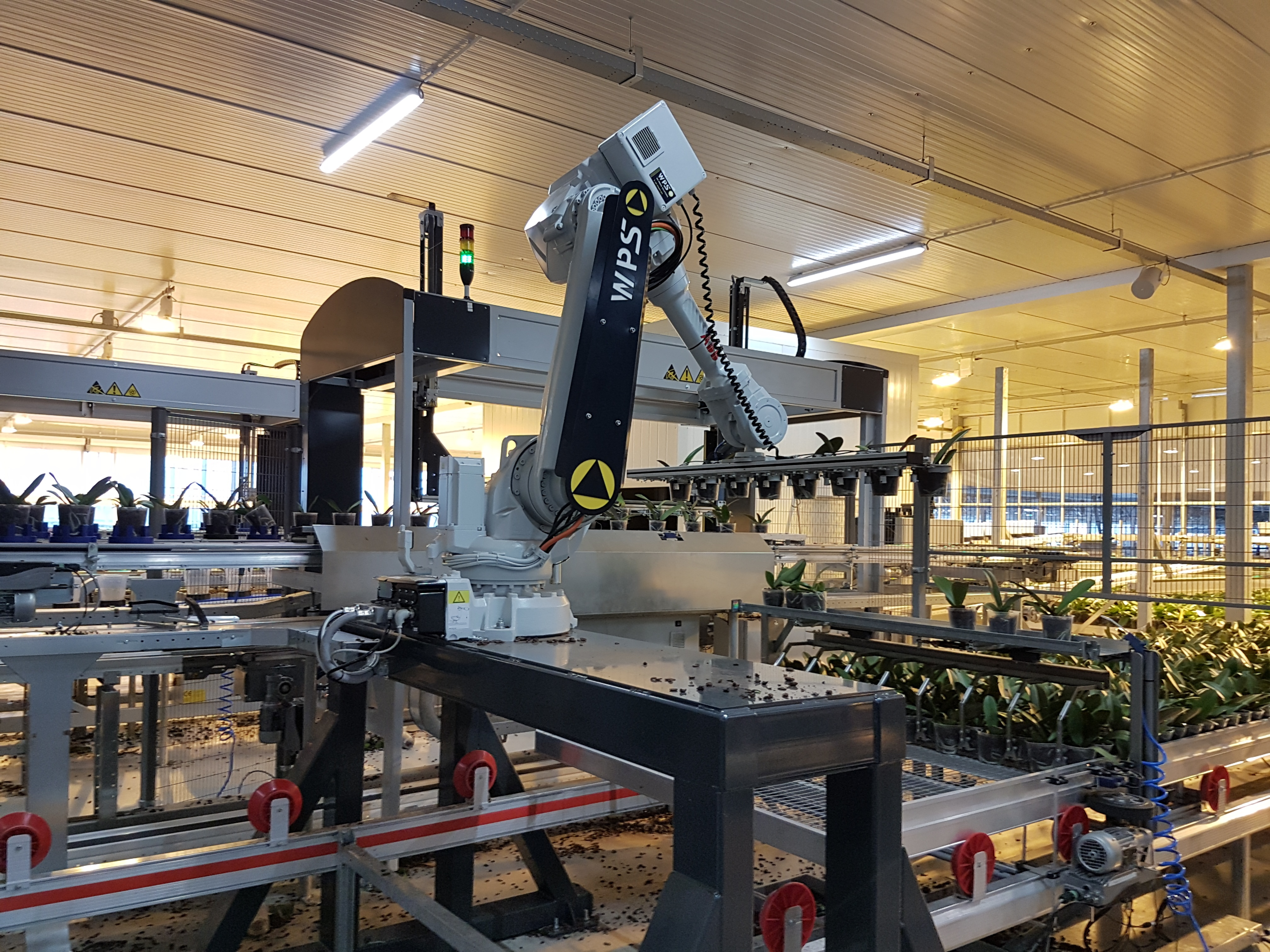 WPS completes second phase at Ter Laak Orchids