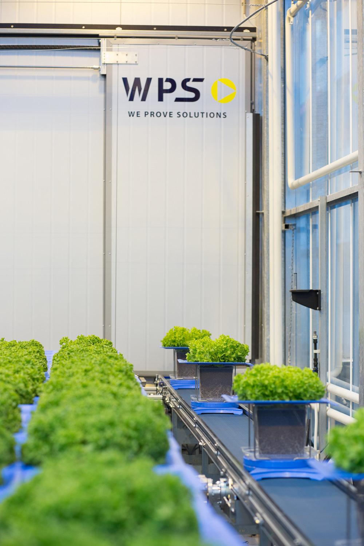 WPS Plant Phenotyping KeyGene