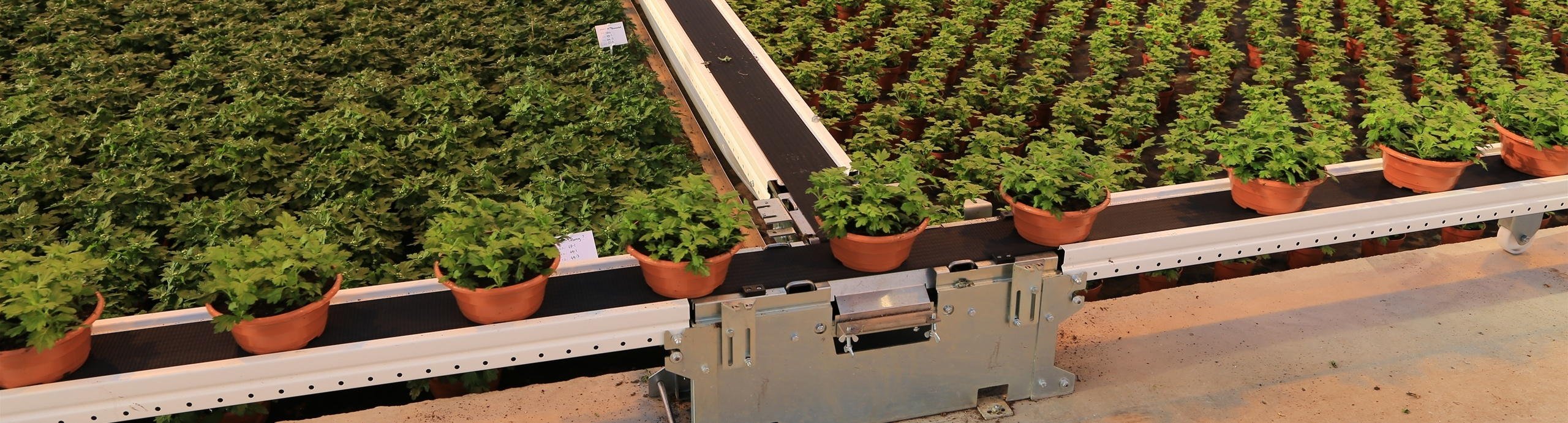 10 questions about conveyor belts - WPS | WE PROVE SOLUTIONS